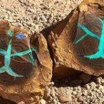 オーストラリアで見つかった木の化石、どう見てもゲームに出てくるアイテムにしか見えない「ファンタジーだ…」「めっちゃかっこいい」 – Togetter