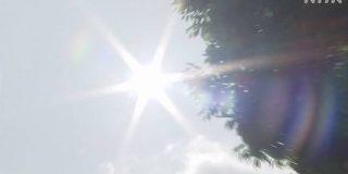 「経験したことない夏に」熱中症 例年以上の備えを コロナ影響 | NHKニュース