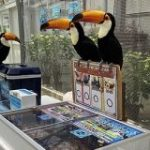 いつもにこやかに対応してくれる掛川花鳥園だが、あるエリアだけスタッフさんの圧が強い「めちゃくちゃ接客されたい!」 – Togetter