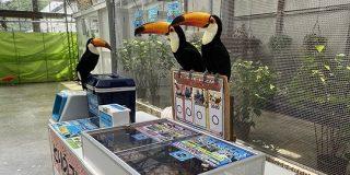 いつもにこやかに対応してくれる掛川花鳥園だが、あるエリアだけスタッフさんの圧が強い「めちゃくちゃ接客されたい!」 - Togetter