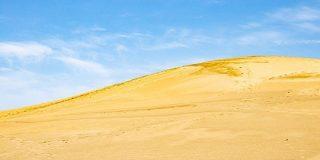 『死んだWindowsXP』と評された鳥取砂丘の画像、言われてみると再現度が高すぎる「声出して笑ってしまった」 - Togetter