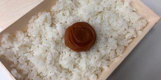 【真の贅沢】伊勢丹で『日の丸弁当(648円)』が売られる時代になりました / 食べてみたら「梅干しのパワー」がエグいです | ロケットニュース24