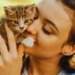 ネコに好かれるコツは「ゆっくりまばたきすること」だと研究者が実証 – GIGAZINE