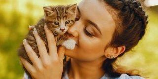 ネコに好かれるコツは「ゆっくりまばたきすること」だと研究者が実証 - GIGAZINE