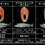 キングサーモンから銀鮭まで…!王子サーモンさん直伝の「鮭の種類と味わいが分かるリスト」役立つ&勉強になるで最高 – Togetter
