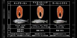 キングサーモンから銀鮭まで...!王子サーモンさん直伝の「鮭の種類と味わいが分かるリスト」役立つ&勉強になるで最高 - Togetter