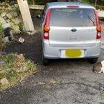 【MKタクシー】上司の車に五芒星の強力な結界が張られているのが発見される「これほどまでに強力な結界見た事ねえ」「この上司さん何者!?」 – Togetter