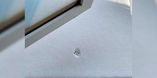 雪に果敢に挑戦するも、一歩で諦めた猫さん「かわいい」「型取って保存したい」 - Togetter