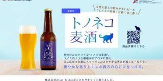 本格派の北陸発クラフトビール「トノネコ麦酒」がNOTOteMAで販売!   nomooo