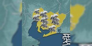 「愛知県の知多半島はデンドロビウム生産量が日本一」が一部の界隈をザワつかせる看板である説 - Togetter