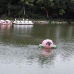 日本好きラトビア人「日本のオノマトペは大変。雨の降る音はたくさんあるし、桃が川から流れてくる音もある」 – Togetter