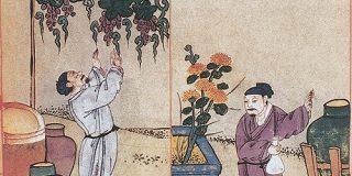 中国ワインの歴史 - 歴ログ