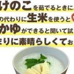 たけのこを茹でるときに、 ぬかの代わりに生米を使うとおかゆができると聞いて試してみたら、 あまりに素晴らしくておったまげた話|鈴木かゆ