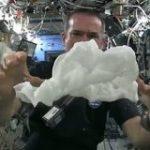 宇宙飛行士のやってみた動画「無重力で濡れたタオルを絞るとどうなるか」 – Togetter