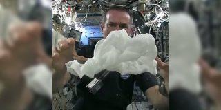 宇宙飛行士のやってみた動画「無重力で濡れたタオルを絞るとどうなるか」 - Togetter