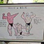 「なぜその絵で説明しているのか」長崎バイオパークのフラミンゴの説明図がカオスを極めていて内容が頭に入ってこない – Togetter