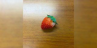 イチゴのつぶつぶから芽が出て葉が出てなんかとんでもない姿に「イ、イチゴなのかお前!?」 - Togetter