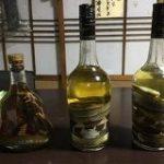 奄美大島のおじいさんは酒が飲みたくなるとハブを捕まえに行くらしい→ハブ酒を作るわけではなかった「討伐クエストじゃん」 – Togetter