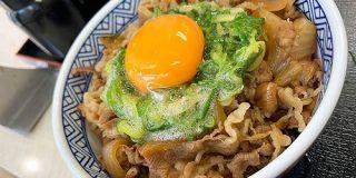 吉野家の通がオススメする牛丼の食べ方「白井式ねぎ玉牛丼」がウマすぎた!普通に卵ぶっかけてた頃に戻れなくなるレベル | ロケットニュース24