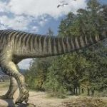 「のび太」の名前を持つ恐竜の足跡化石、科博がレプリカを公開 – ITmedia