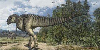 「のび太」の名前を持つ恐竜の足跡化石、科博がレプリカを公開 - ITmedia