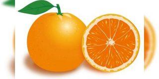 柑橘類から抽出される「クエン酸」のクエンには漢字があり、オレンジの語源になったある果物を指す中国語が日本語になったものだった - Togetter