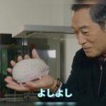 『上様、お戯れを!』松平健さんとハリネズミのイチャラブ動画が可愛すぎて「ズキューンてなった」「上様の掌で転がされる可能性」 – Togetter