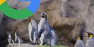 大きなサムネイル画像のGoogle検索&MUMがオススメするYouTubeの関連動画 #SearchOn   海外SEO情報ブログ